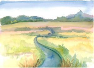 Field and Stream, watercolor by Susan Iozzo